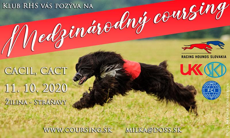 Medzinárodný coursing CACIL, CACT - Žilina